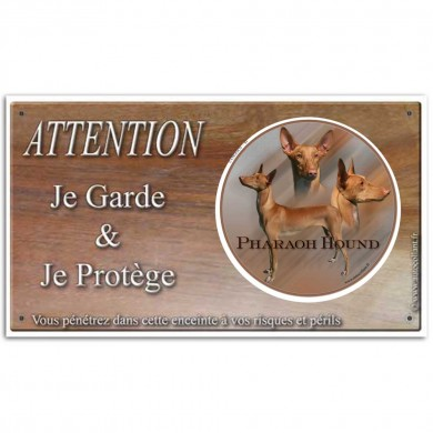 Plaque ou panneau de garde Attention au Chien - pharaoh hound