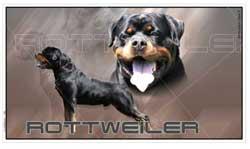 Format de stickers autocollants voiture présentés : 600 espèces canines au choix