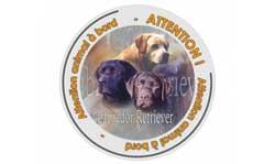 stickers chien à bord labrador retriever
