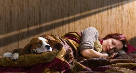 home sweet home, un moment paisible sur un lit avec son chien