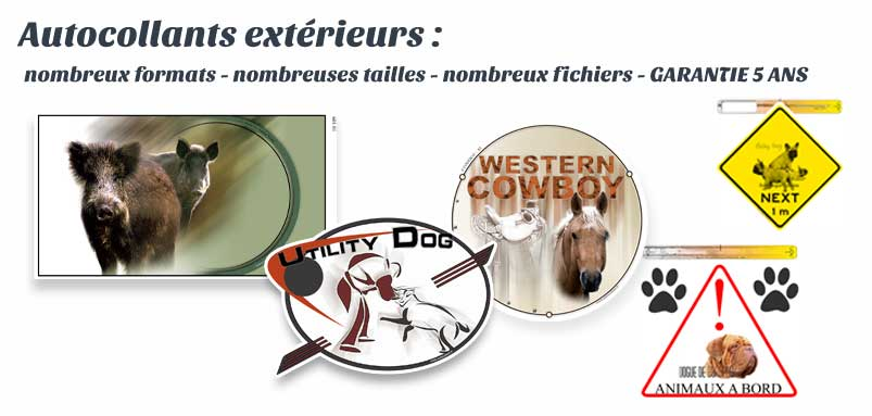 stickers animaux, à coller sans décoller