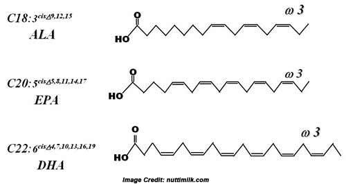 les molécules oméga 3