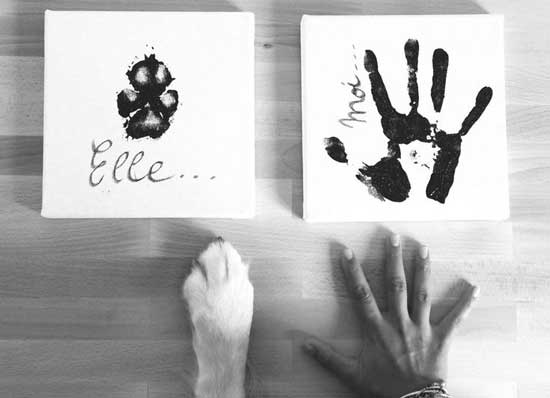 races canines et êtres humains