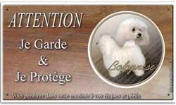 pancarte de chien de compagnie bichon bolonais