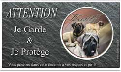 Atttention au chien, Mastiff anglais